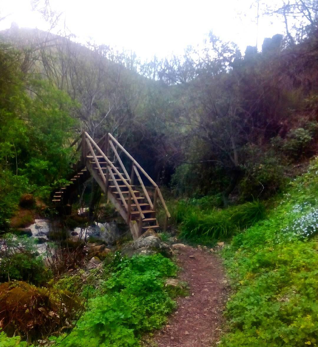 Ro Cerezuelo belleza natural a 10 minutos de casa walkinghellip