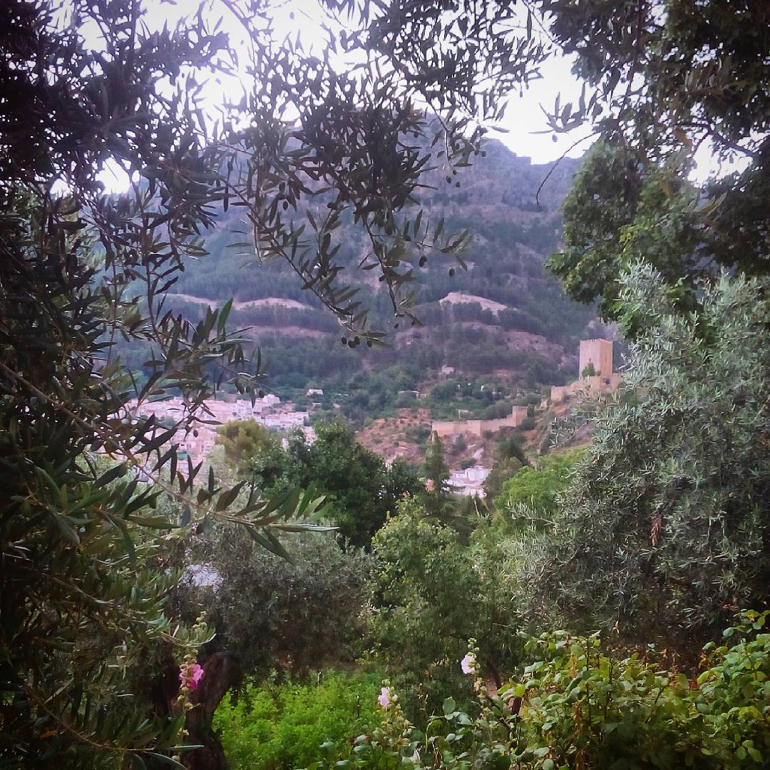 Cazorla olivares castillodelayedra jaen andalucia verano