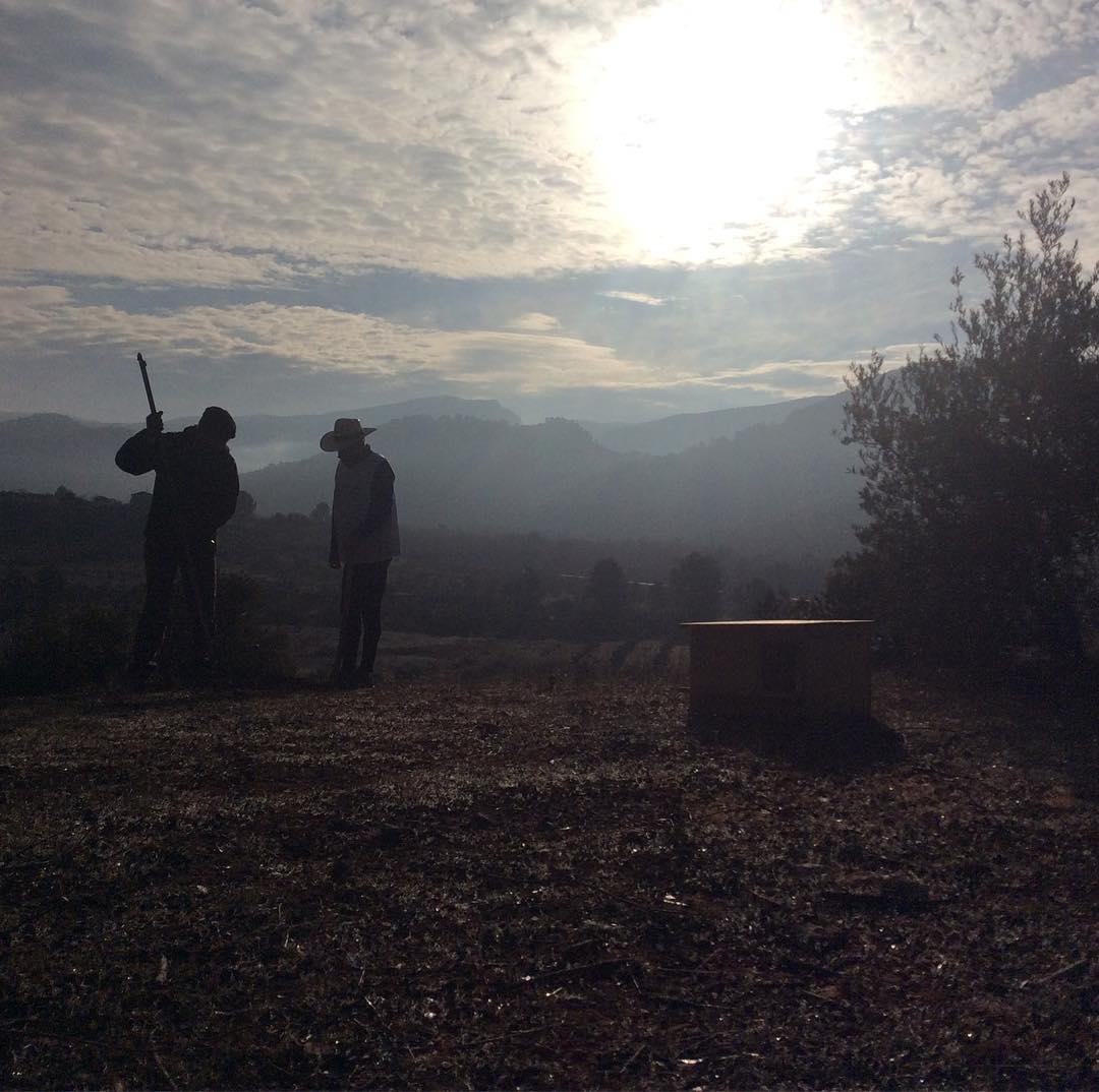 Llenando de vida los Olivares el olivar en Jan eshellip